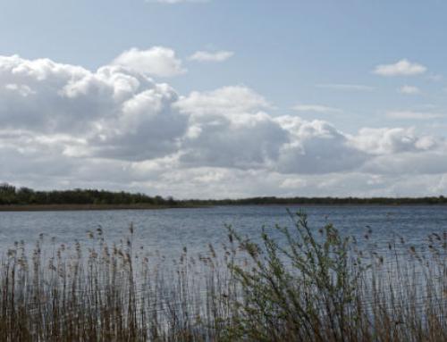 Het Naardermeer